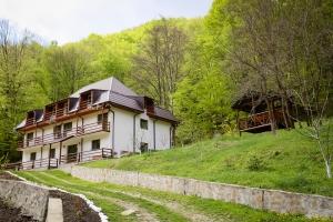 Pensiunea Vila Casoca - Primavara